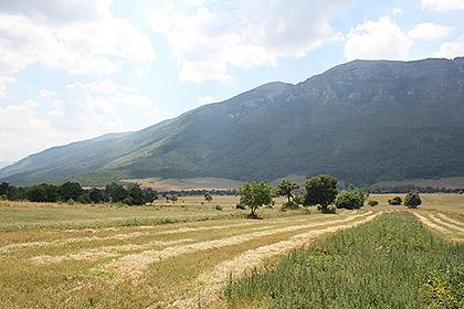 http://www.srbizasrbe.org/wp-content/themes/szs-theme/images/Hercegovina/2016/Nenadic/nenadici-9.JPG
