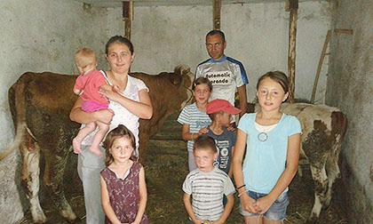 Купљена крава за Димиће са КиМ