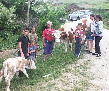 Нова помоћ за породице на Космету