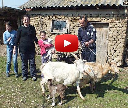 Видео - Божићна акција на Космету