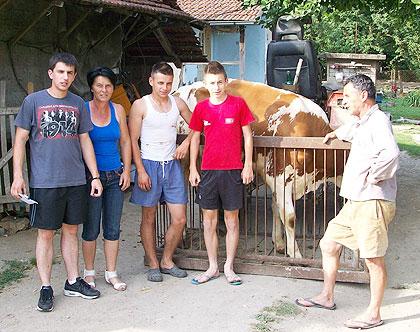 Породици Хрваћанин дарована крава