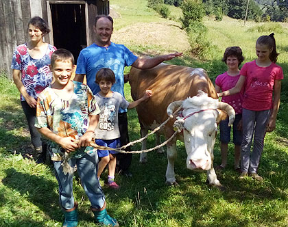 Крава уручена Лазићима из Угљевика