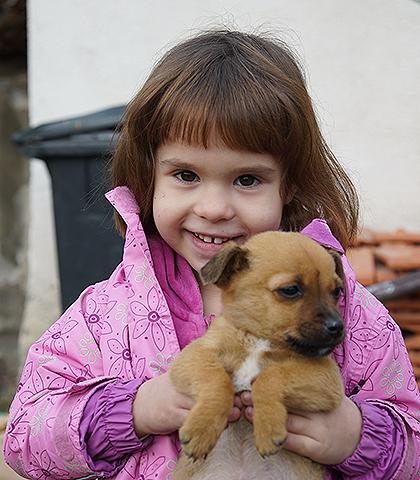 http://www.srbizasrbe.org/wp-content/themes/szs-theme/images/Srbija/2016/Bosnjakovic/b4.jpg